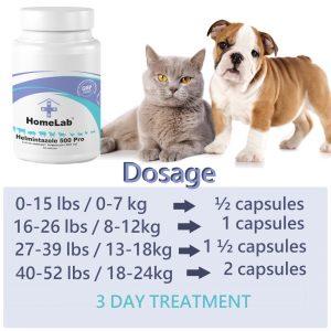 treatment fenbendazole